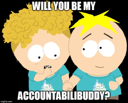 Accountabilibuddies